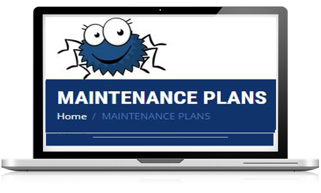 maintenance plans-Smiling Spiders Web design and development
