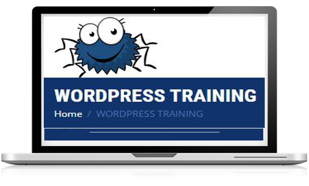 wordpress training-Smiling Spiders Web design and development
